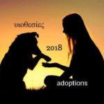 StrayCare.gr Αδέσποτη Φροντίδα - Adoptions 2018 - Υιοθεσίες 2018