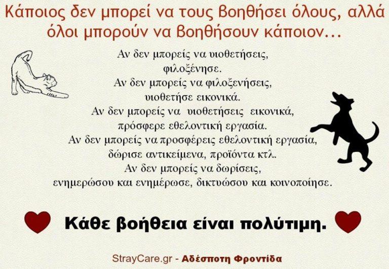 StrayCare.gr Αδέσποτη Φροντίδα - Βοήθησε - Contribute