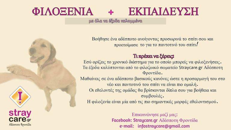 StrayCare.gr Αδέσποτη Φροντίδα - Φιλοξένησε - housing