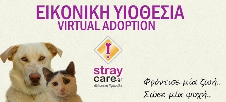 StrayCare.gr Αδέσποτη Φροντίδα - Εικονική Υιοθεσία - Virtual Adoption